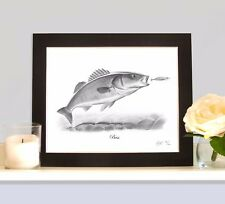 BASS Sea Fishing Fish Art Print Drawing Picture MOUNTED Present Gift For Angler