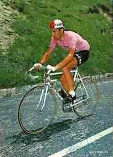 EDDY MERCKX Signed Autograph Signé cyclisme Maillot Rose Jersey pink tour france
