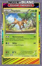Haydaim - NB02:Pouvoirs Emergents - 16/98 - Carte Pokemon Neuve Française