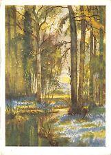 B51232 art reproduction Foret peint par R Hext