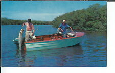 AY-085 - Fishing, Good Catch, 1950's-1960's Advertising Sales Sample Postcard