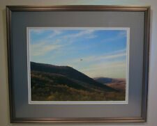 Hawk Over Iona Island 26X31 Framed Landscape Pigment Print by Alan Del Vecchio