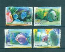 PESCI TROPICALI - TROPICAL FISHES BELARUS 2006