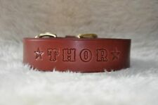 "Leather Dog Custom Collar Personalized Free 1 1/2"" WIDE Color Choice"