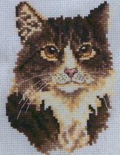 Stickpackung Stickbild sticken 11x8 Brown Tabby Katze Kätzchen Kitten Kreuzstich