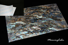 Dragon Paua Shell Adhesive Veneer Sheet (MOP Inlay Overlay Nacre Luthier)