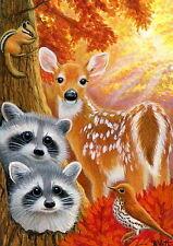 Raccoon chipmunk thrush bird fawn deer forest wildlife  OE aceo print art