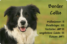 BORDER COLLIE - A4 Metall Warnschild Hundeschild SCHILD Türschild - BOC 01 T4
