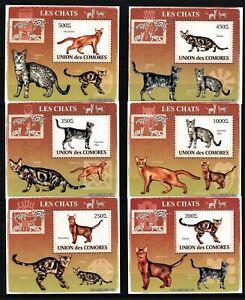 COMORES 2009 LES CHATS CATS GATOS KATZEN DOMESTIC ANIMALS FAUNA DELUX STAMPS MNH