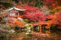 Japanese Garden Colourful Trees Landscape Wall Art Poster & Canvas Pictures