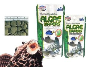 Hikari Mini Algae Wafers 3oz  Sinking Ideal Herbivores Fish Food Scientific Diet