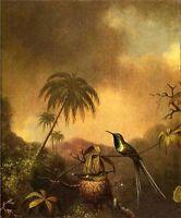 Beautiful Oil painting Martin Johnson Heade - Thorn-Tail, Brazil bird in view