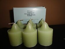 Partylite  Wild Fern Box of 6 votives Candles   NEW IN BOX