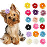 20pcs Dog Hair Bows Rubber Bands Petal Flowers Cat Dog Grooming Hair Accessories