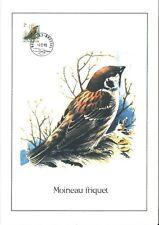FDC 2347 - Oiseau Buzin sur gravure format A4 !