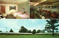 Vintage Postcard Pines Motel Restaurant US Highway Opelika AL Alabama