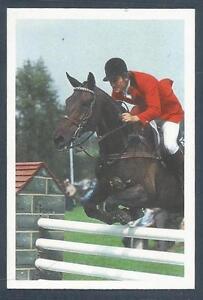 A QUESTION OF SPORT-1986-ENGLAND-EQUESTRIAN-ROBERT SMITH
