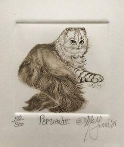 VINTAGE CAT ETCHING Signed , Numbered . Dated 1981 . Framed