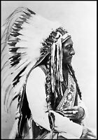 "1885- Sitting Bull portrait, antique photo, Native American, Lakota, 24""x16"""
