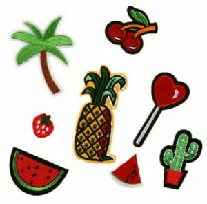 CHERRY STRAWBERRY PINEAPPLE CACTUS EMBROIDERED FABRIC IRON APPLIQUE PATCH* BADGE