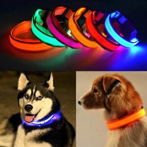Night Safe LED Luminous Fluorescent Pet Dog Collar