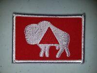 Boy Scout OA Lodge 133 Ma-Nu Vigil Token Patch