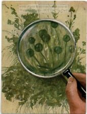 Mold Growth Determined By Tempreature Humidity 1930s Ad Trade Card