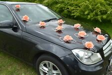BUTTERFLIES CORAL wedding car decorations  kit white ecru red pink blue