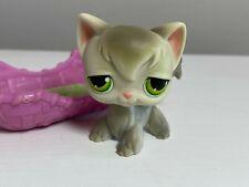 Littlest Pet Shop #20 Longhair Cat & Bed, Red Magnet Authentic Lps