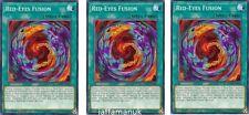 x 3 red-eyes fusion - ledu-en006 - commun - 1st édition YUGIOH CARTE