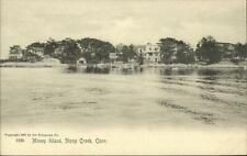 Stony Creek CT Money Island Rotograph 5338 c1905 Postcard