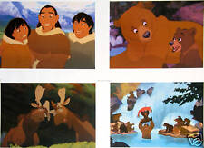 4 Disney Store Lithographs BROTHER BEAR '03 MINT Lithos