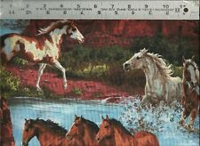 Springs ~ HORSES Pintos Bays Grey Chestnuts ~ 100% Cotton Quilt Fabric BTY