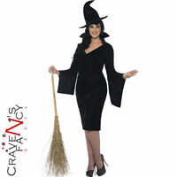 Ladies Curves Witch Costume Adult Halloween Fancy Dress Outfit Plus Size 16-30