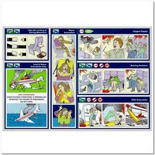 Tyler Durden Fight Club Airplane Project Mayhem Safety Postcard + Business Card