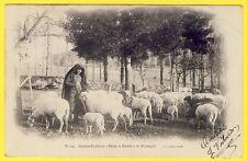 cpa Editeur LOURDES Hautes Pyrénées PÂTRE BERGER MOUTONS et BREBIS à la MONTAGNE