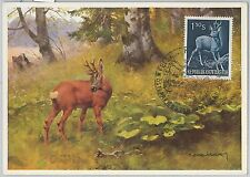 52144 - AUSTRIA -  MAXIMUM CARD - 1959  ANIMALS - HUNTING
