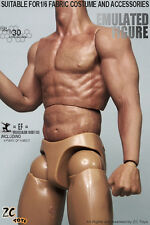NEW Zctoys Muscle arm perfect BODY Similar to HT Flexible 1/6 FIGURE