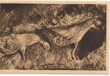 les Eyzies  abri du cap-blanc ,bas reliefs ,magdaléniens ,chevaux sculptés