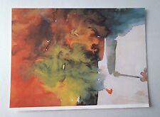 D28> Stampa - Il disegno nell'età evolutiva di bambini malati-La casa in fiamme