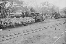 Queensland Cane Railways Steam Moreton Sugar Mill Shay, Krauss and Fowler Locos