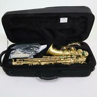 Selmer Model AS42MW Professional Alto Saxophone + Selmer Paris Neck BRAND NEW