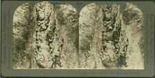 French Soldiers Resting in the Trenches - WW1 Stereoview