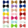 20 Pcs Baby Girls Toddler Hair Ribbon Bows Alligator Hair Clips Bow Hairpins SJA