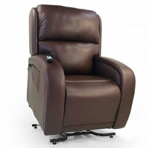 Golden Lift Chair- EZ Sleeper- Medium/Large-Brisa-Coffee Bean