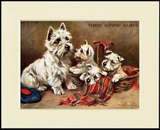 WESTIE WEST HIGHLAND WHITE TERRIER THREE BONNIE BAIRNS DOG PRINT READY TO FRAME