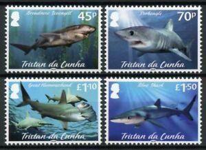 Tristan da Cunha Marine Animals Stamps 2020 MNH Sharks Great Hammerhead 4v Set
