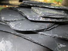Schieferplatten Schiefersteine für Apuarium oder Terrarium 10 Stück  8 x 12 cm
