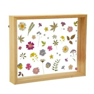 Sass and Belle Herbarium Pressed Flowers Framed Wall Art Pictures