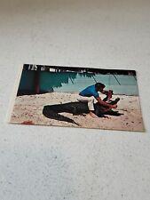Alligator wrestling in Florida~ 1960s vintage postcard, Unused